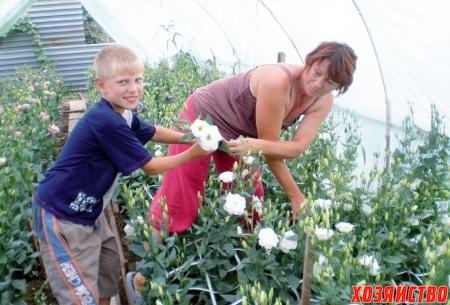 Светлана и внук Вадим готовят срезы цветов на реализацию