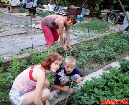 Каждый занят своим делом. Светлана поливает, внуки борются с сорняками
