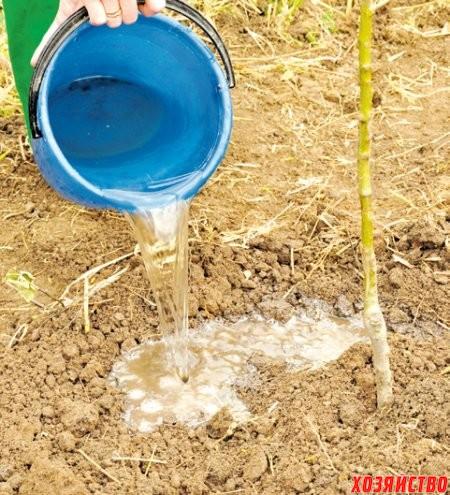 Как сделать так чтобы воды в подполе не было