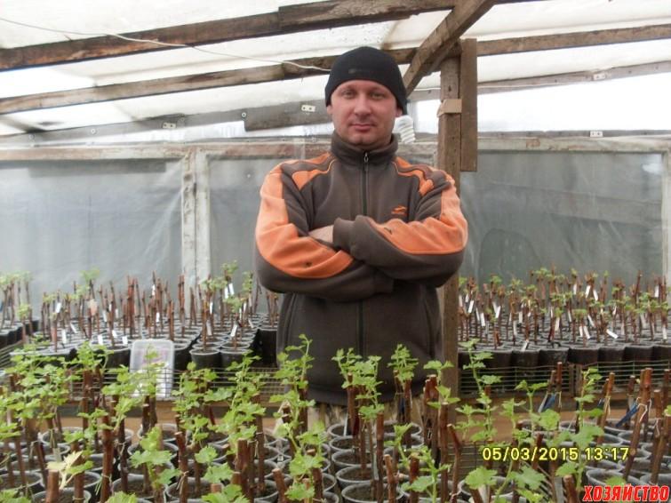 povelitel-vinogradnykh-sazhnetsev.jpg