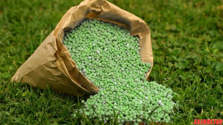 Как зависит урожайность сада от азотных удобрений4.jpg
