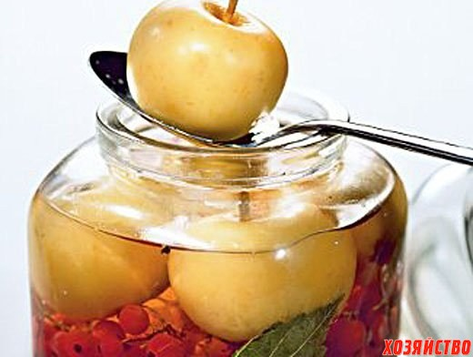 Яблоки моченые.jpg