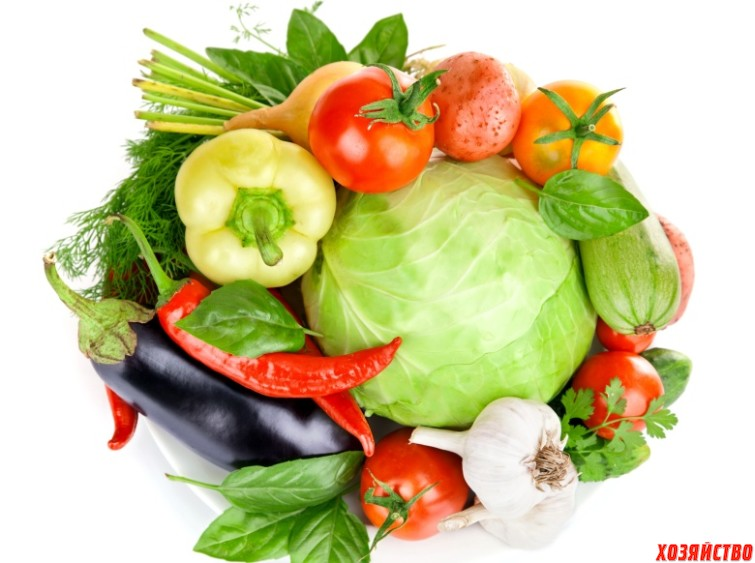овощи.jpg