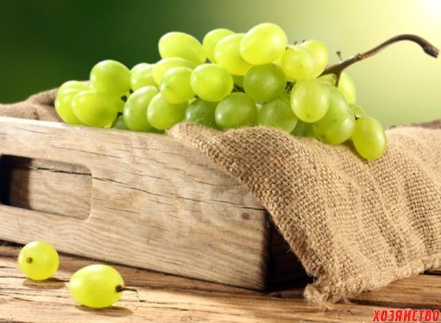 Hranenie-vinograda-v-yashhikah-foto.jpg