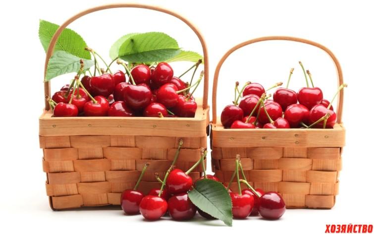 Food_Berries__fruits__nuts_Baskets_with_cherries_034094_.jpg
