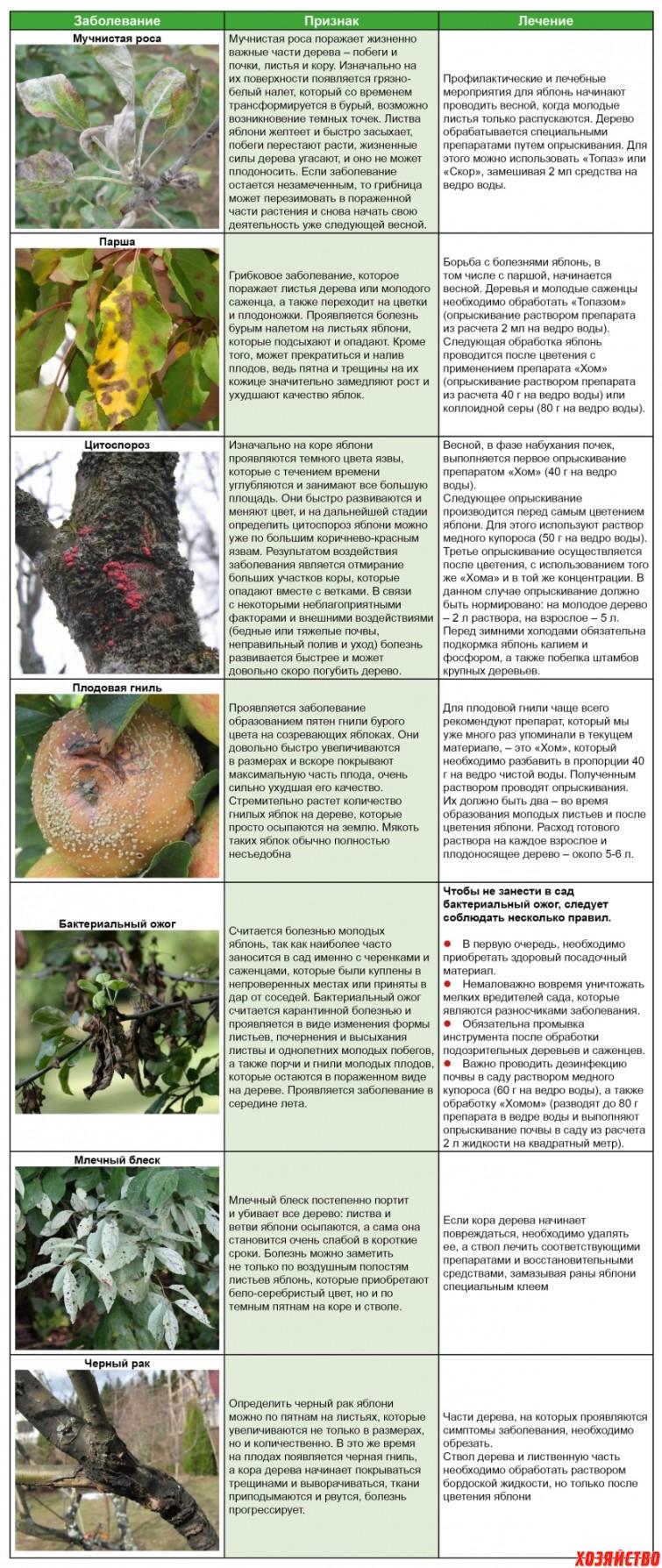 Самые опасные болезни яблонь и способы борьбы с ними. Таблица1.jpg