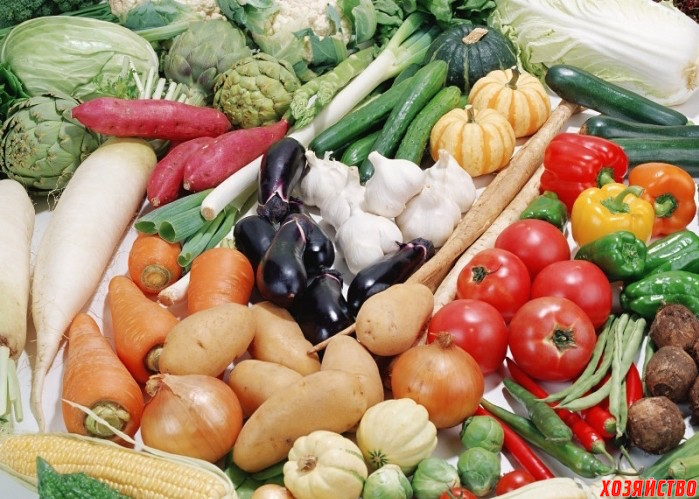 Выращивание овощей под землей