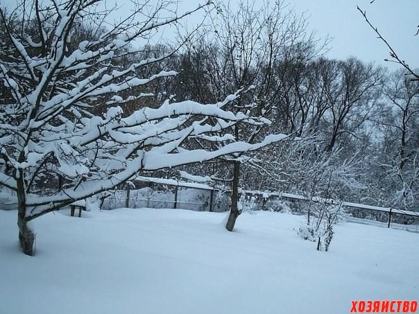 Как ударжать снег.jpg