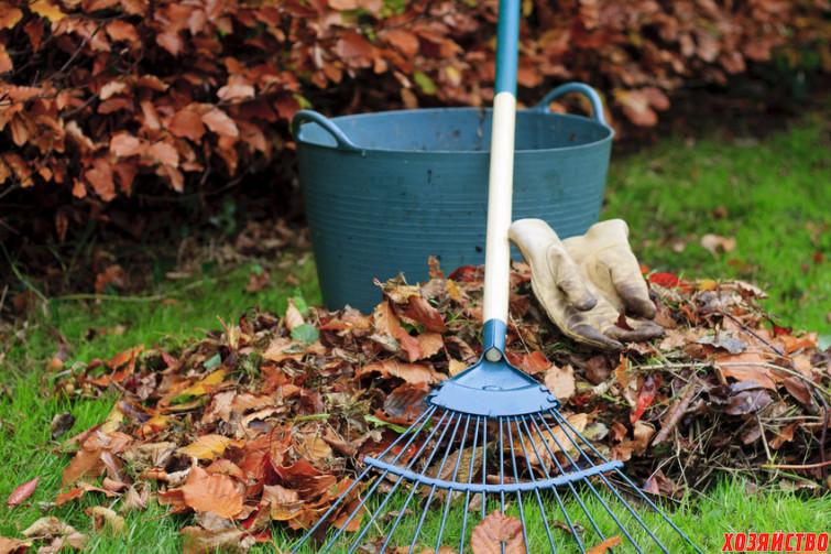 Опавшая листва – еще одно излюбленное место зимовки садовых вредителей2.jpg