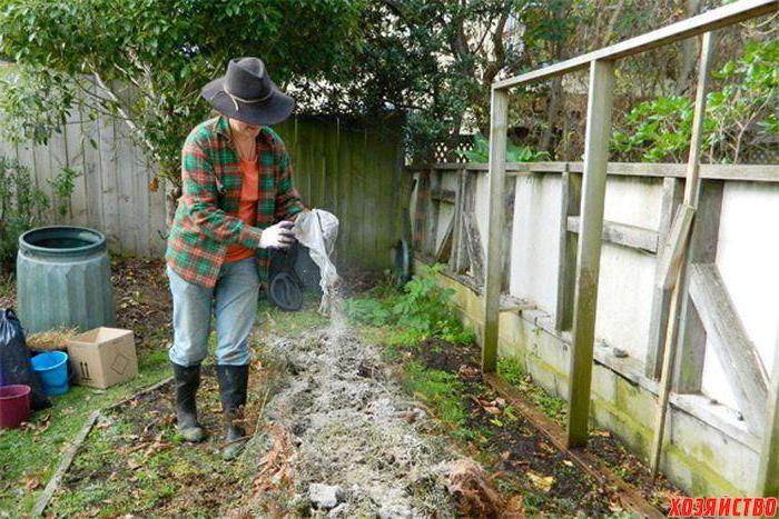 Советы по использованию древесной золы в саду.jpeg