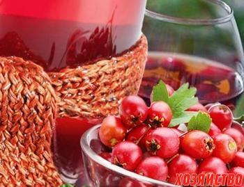 vino_350.jpg