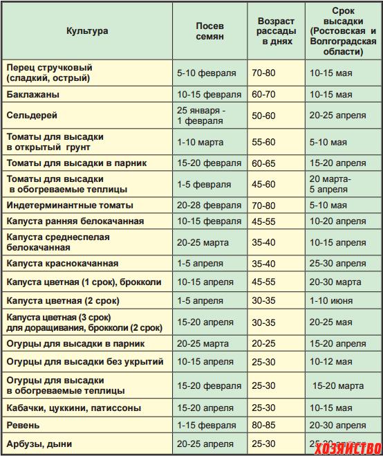 Таблица сроки и глубина посева семян