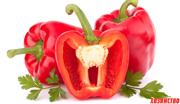 main_red-bell-pepper.png