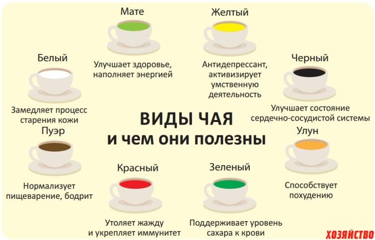 Виды чая в рисунках