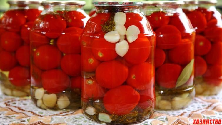 помидоры.jpg