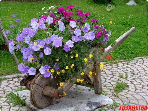 Самый красивый цветник своими руками