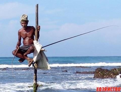 рыбалка в шри-ланке1.jpg