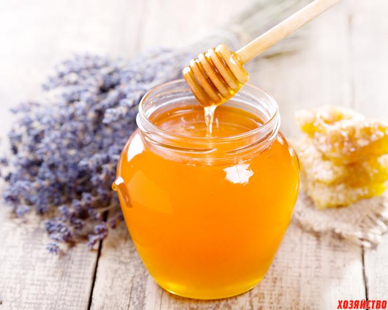 Мед поможет прижиться прививкам.jpg