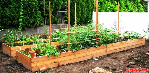 raised-bed-gardens-small.jpg