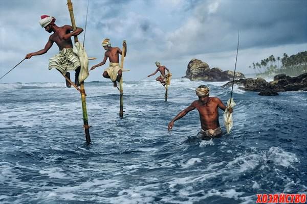 рыбалка в шри-ланке.jpg