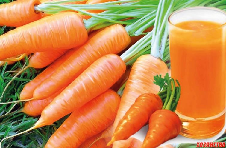 морковь-морковный сок.jpg