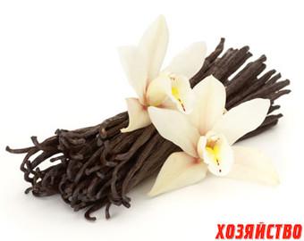 ванильная орхидея.jpg