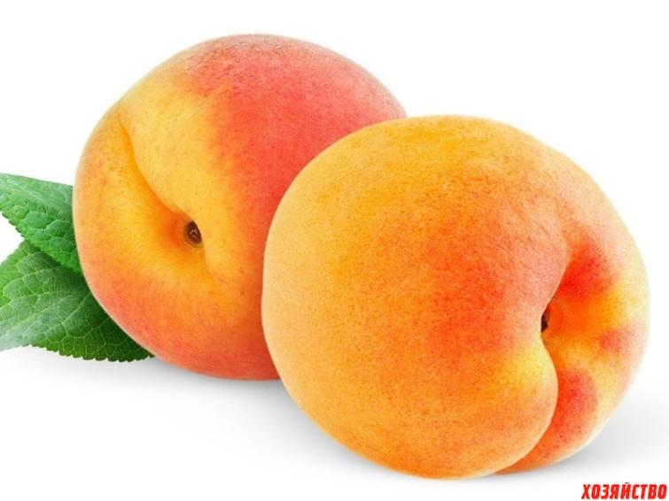 Персики.jpg