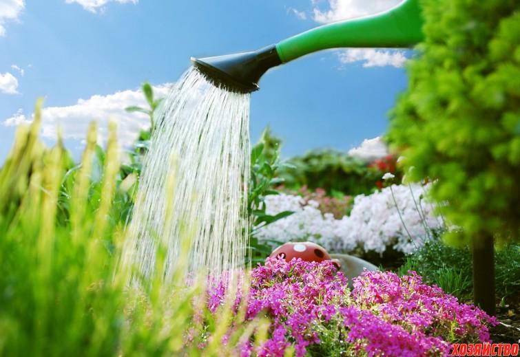 срочно напоите сад водой.jpg