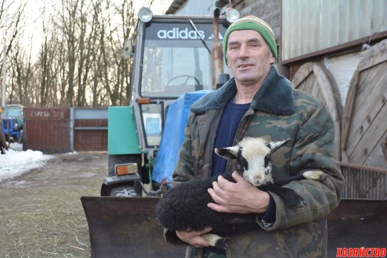 Овцами занимается глава семьи Сергей Иванович.JPG