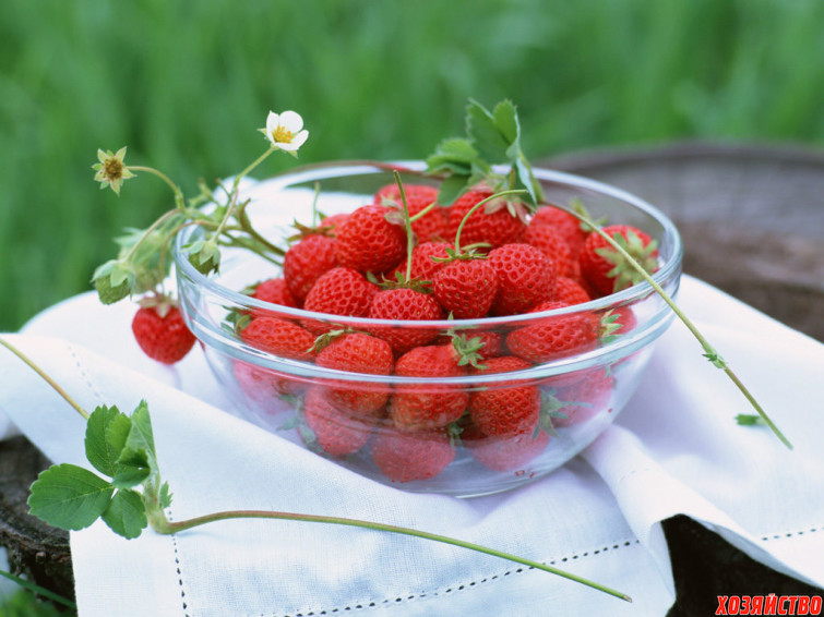 fruity-2.jpg