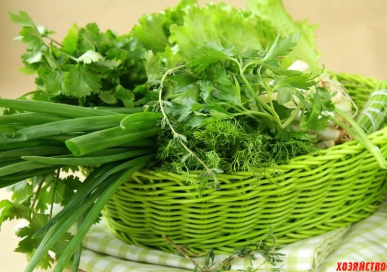 разные салаты в корзине которые стоит посадить.jpeg