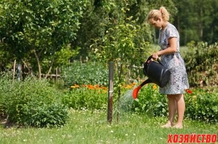 the_countrywoman_is_watering_plants.jpg