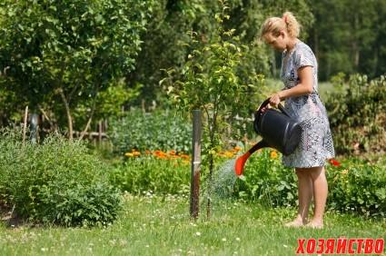 the_countrywoman_is_watering_plants.jpg