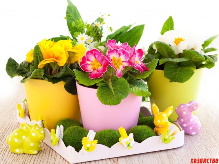 flowers room2.jpg