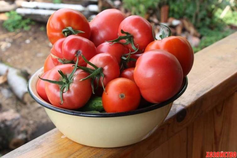 «Медовая бражка» для помидоров.jpg