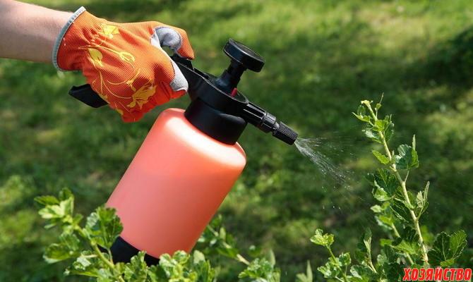 Как правильно проводить жидкие подкормки сада.02.jpg
