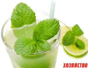 limon s myatoy.jpg