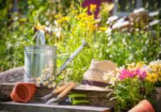 Лунно-посевной календарь садовода-огородника на 2016 год