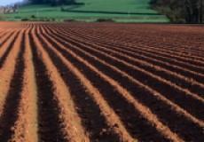 Как восстановить структуру почвы