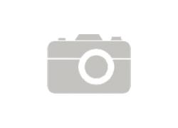 Размножение фикуса эластика
