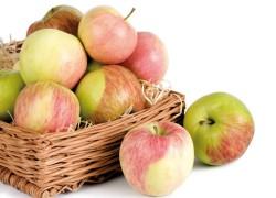 Зимние сорта яблонь, которые нужно посадить
