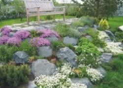 Альпийская горка своими руками. Камни в саду.