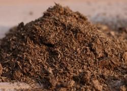 Как спасти почву
