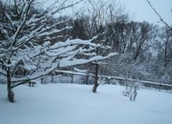 Как удержать снег на участке. Популярные приёмы