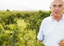 О названиях сортов винограда