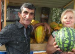 Секреты выращивания арбузов на Кубани