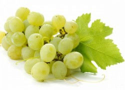 Стимуляторы роста винограда