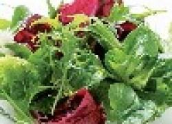 Салат на грядке и на столе