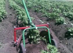 Лучший помощник в огороде