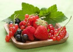 Сажаем ягодники осенью